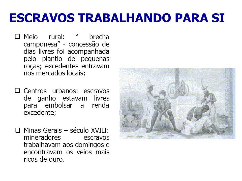ESCRAVOS TRABALHANDO PARA SI Meio rural: brecha camponesa - concessão de dias livres foi acompanhada pelo plantio de pequenas roças; excedentes entrav