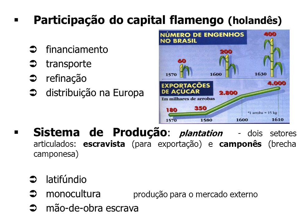 A PRODUÇÃO AÇUCAREIRA - projeto agrícola de exploração colonial - Por que o açúcar? açúcar tinha grande aceitação no mercado europeu - alto preço Port