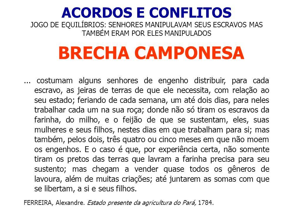 ACORDOS E CONFLITOS JOGO DE EQUILÍBRIOS: SENHORES MANIPULAVAM SEUS ESCRAVOS MAS TAMBÉM ERAM POR ELES MANIPULADOS BRECHA CAMPONESA... costumam alguns s