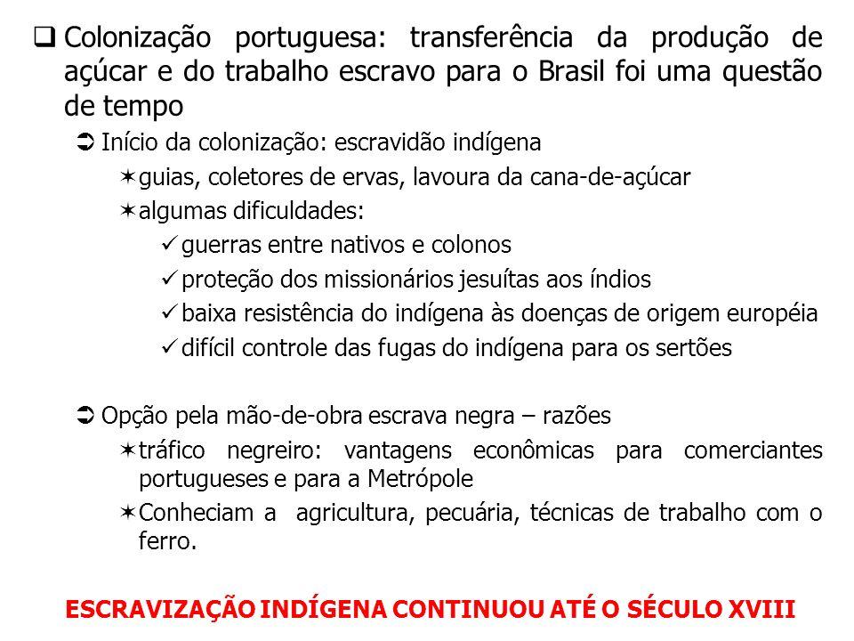 Colonização portuguesa: transferência da produção de açúcar e do trabalho escravo para o Brasil foi uma questão de tempo Início da colonização: escrav