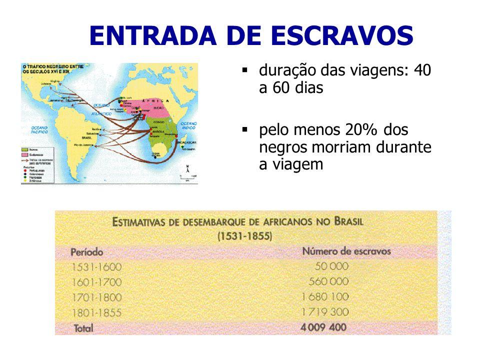 ENTRADA DE ESCRAVOS duração das viagens: 40 a 60 dias pelo menos 20% dos negros morriam durante a viagem