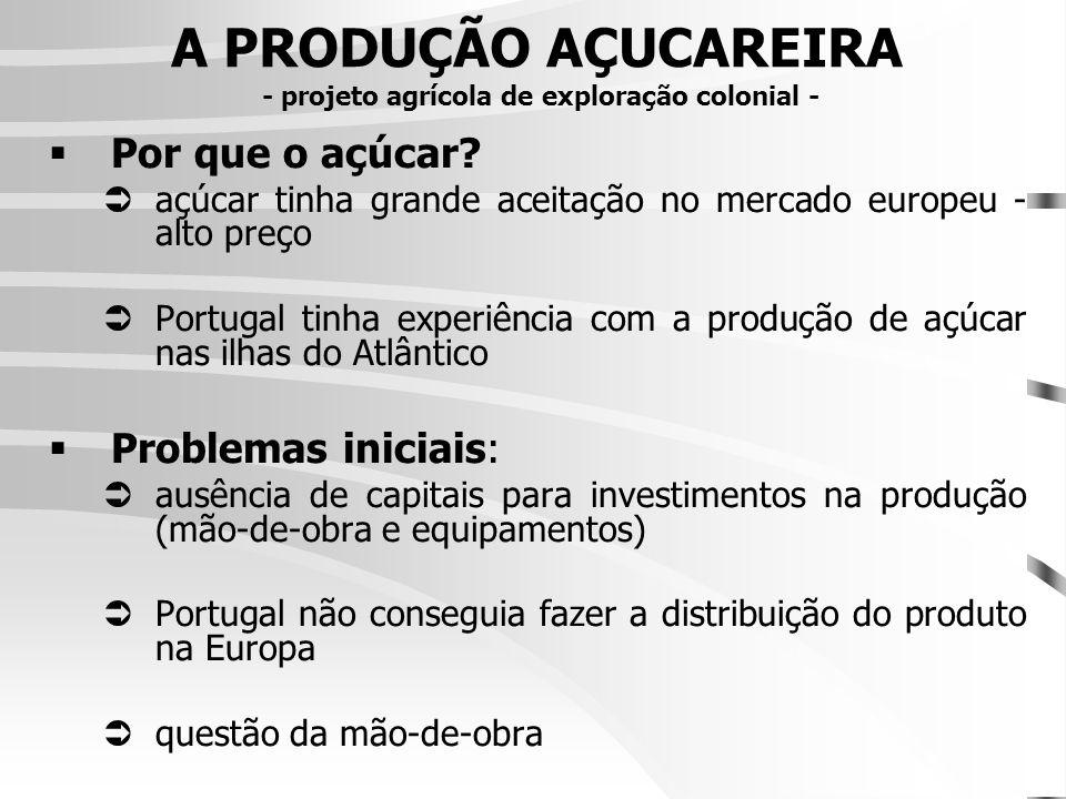 A PRODUÇÃO AÇUCAREIRA - projeto agrícola de exploração colonial - Por que o açúcar.