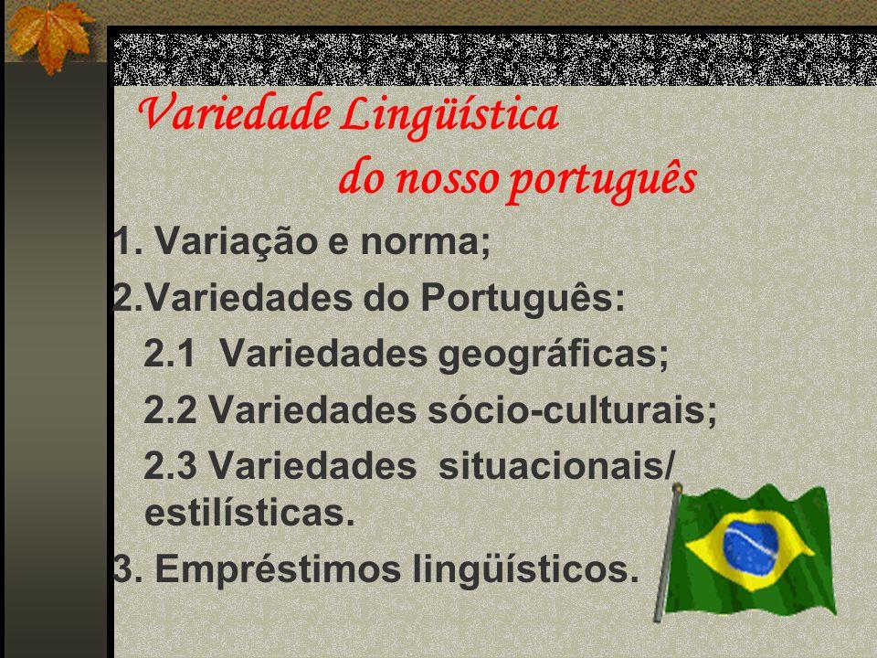 A língua é ou faz parte do aparelho ideológico, comunicativo e estético da sociedade que a própria língua define e individualiza.