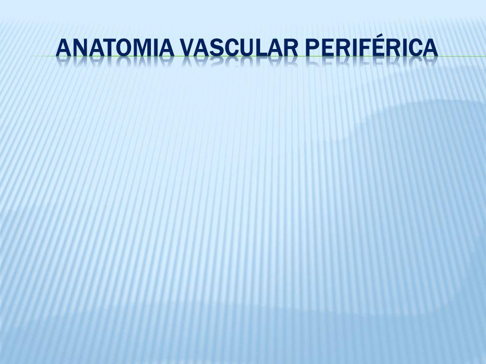 Fixação com Curativo Transparente Tampinha Flexível Tampinha de plástico rígido