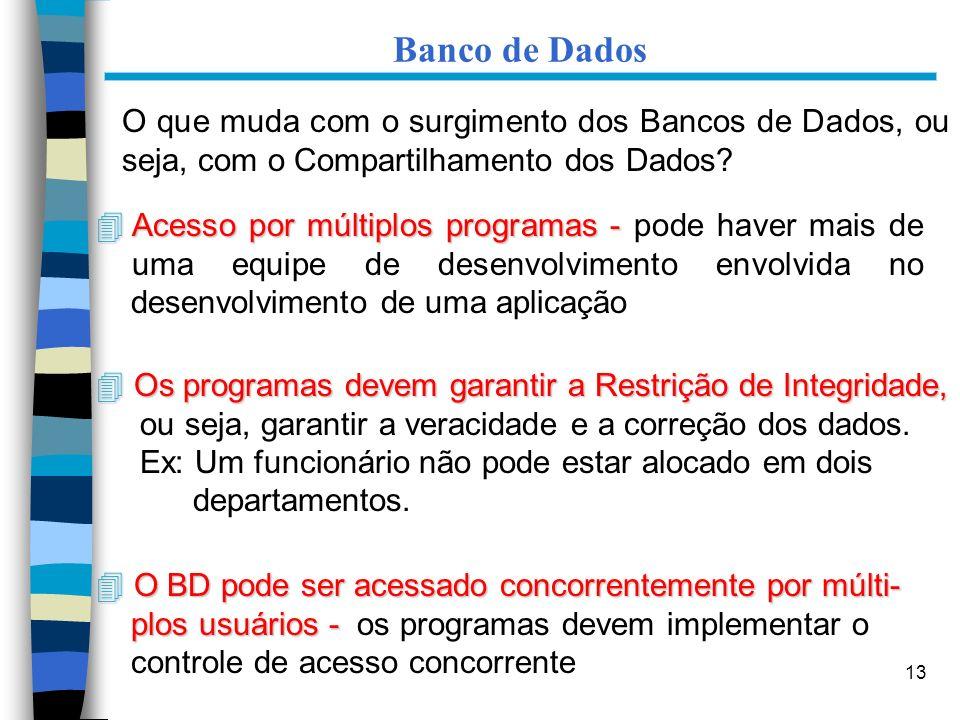 13 Banco de Dados O que muda com o surgimento dos Bancos de Dados, ou seja, com o Compartilhamento dos Dados? 4 Acesso por múltiplos programas - 4 Ace