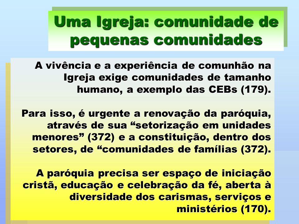 A vivência e a experiência de comunhão na Igreja exige comunidades de tamanho humano, a exemplo das CEBs (179). Para isso, é urgente a renovação da pa