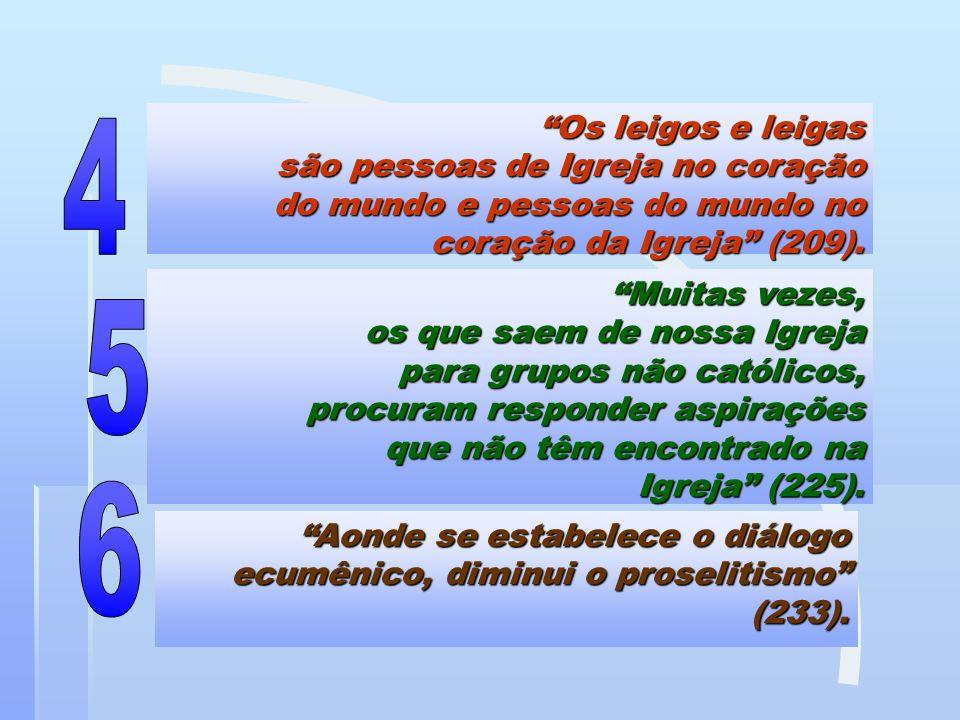 Os leigos e leigas são pessoas de Igreja no coração do mundo e pessoas do mundo no coração da Igreja (209). Muitas vezes, os que saem de nossa Igreja
