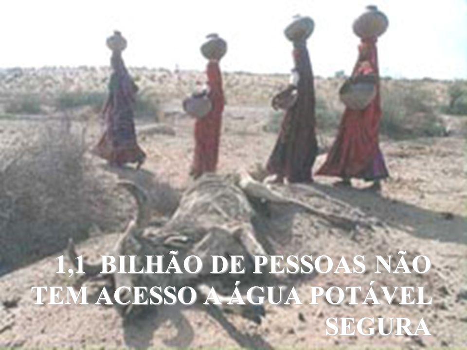 SP - Capital 1,1 BILHÃO DE PESSOAS NÃO TEM ACESSO A ÁGUA POTÁVEL SEGURA