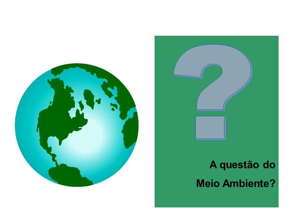 A questão do Meio Ambiente?