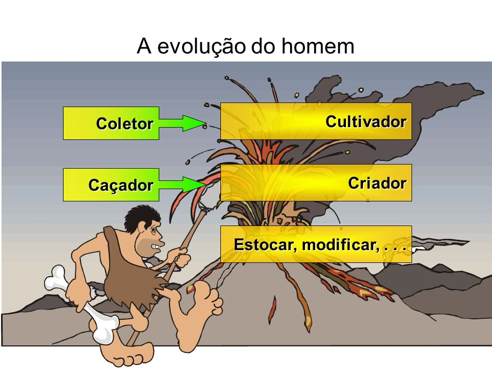 A evolução do homem Coletor Caçador Cultivador Criador Estocar, modificar,...