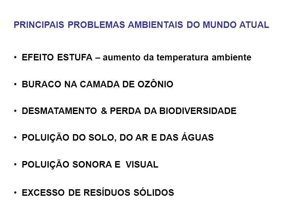PRINCIPAIS PROBLEMAS AMBIENTAIS DO MUNDO ATUAL EFEITO ESTUFA – aumento da temperatura ambiente BURACO NA CAMADA DE OZÔNIO DESMATAMENTO & PERDA DA BIOD