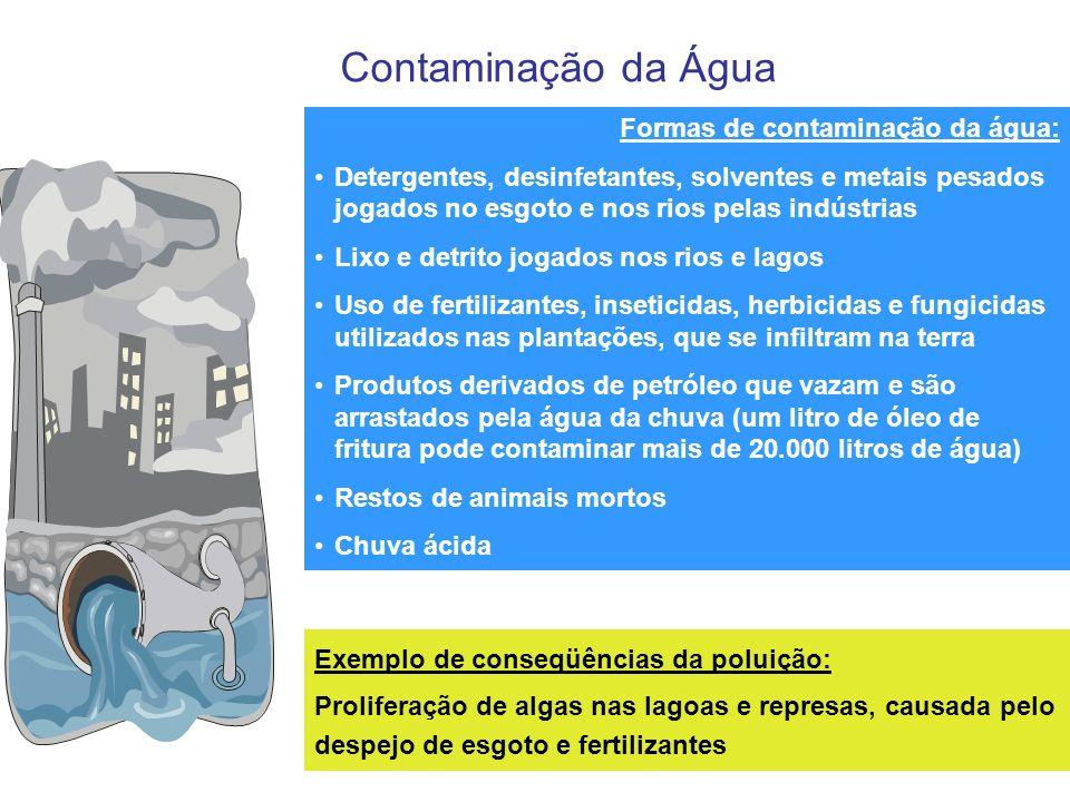 Contaminação da Água Formas de contaminação da água: Detergentes, desinfetantes, solventes e metais pesados jogados no esgoto e nos rios pelas indústr
