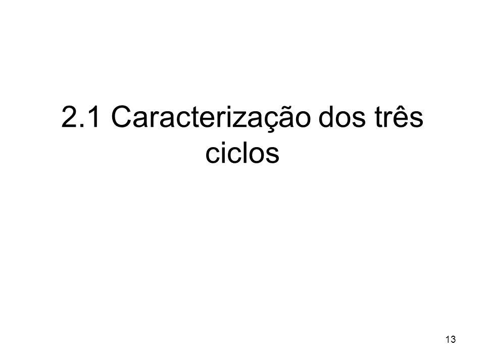 13 2.1 Caracterização dos três ciclos