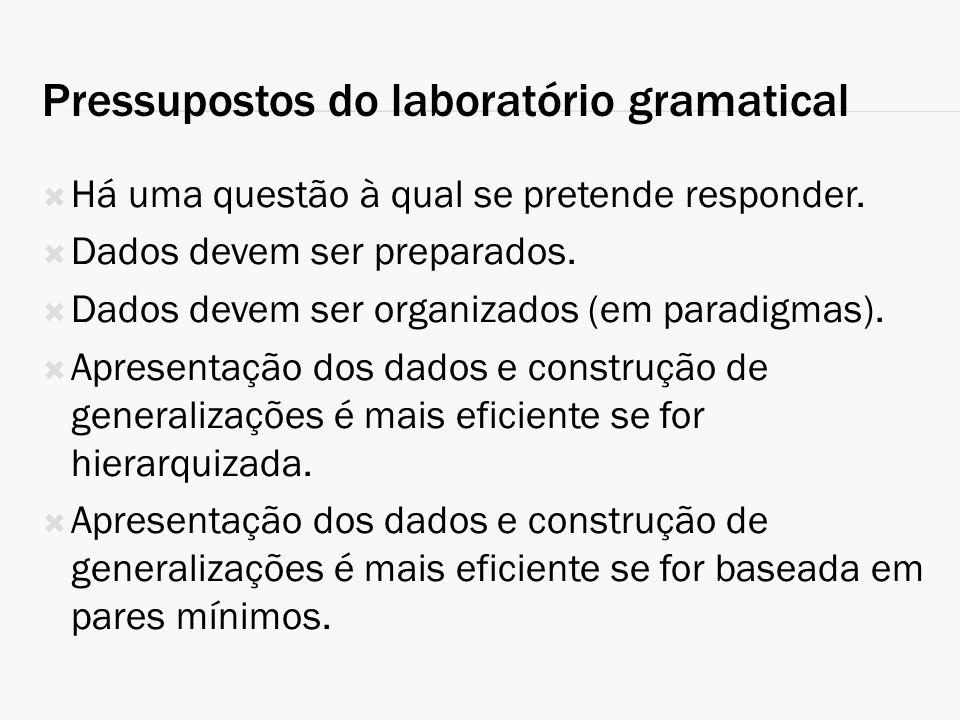 Pressupostos do laboratório gramatical Há uma questão à qual se pretende responder. Dados devem ser preparados. Dados devem ser organizados (em paradi