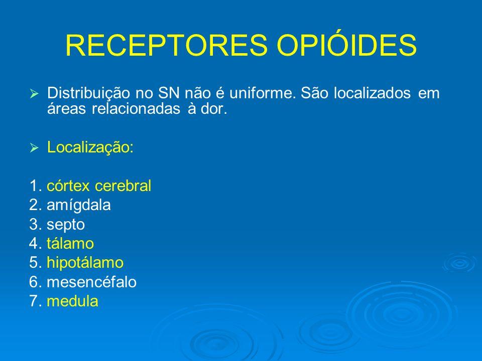 RECEPTORES OPIÓIDES Distribuição no SN não é uniforme. São localizados em áreas relacionadas à dor. Localização: 1. córtex cerebral 2. amígdala 3. sep