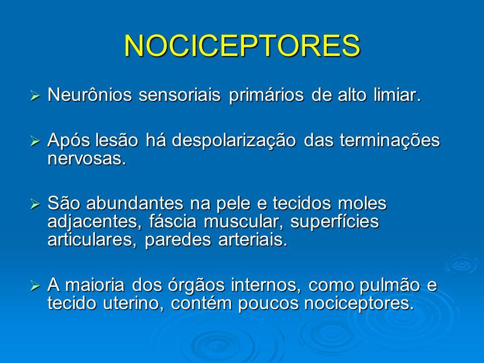NOCICEPTORES Neurônios sensoriais primários de alto limiar. Neurônios sensoriais primários de alto limiar. Após lesão há despolarização das terminaçõe