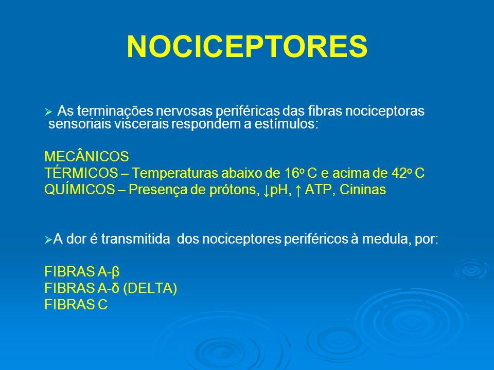 NOCICEPTORES As terminações nervosas periféricas das fibras nociceptoras sensoriais viscerais respondem a estímulos: MECÂNICOS TÉRMICOS – Temperaturas
