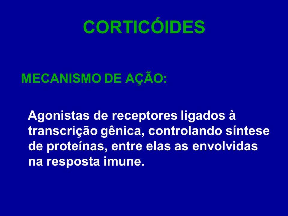 CORTICÓIDES MECANISMO DE AÇÃO: Agonistas de receptores ligados à transcrição gênica, controlando síntese de proteínas, entre elas as envolvidas na res
