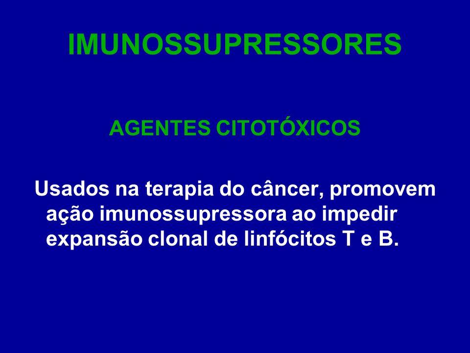 IMUNOSSUPRESSORES AGENTES CITOTÓXICOS Usados na terapia do câncer, promovem ação imunossupressora ao impedir expansão clonal de linfócitos T e B.