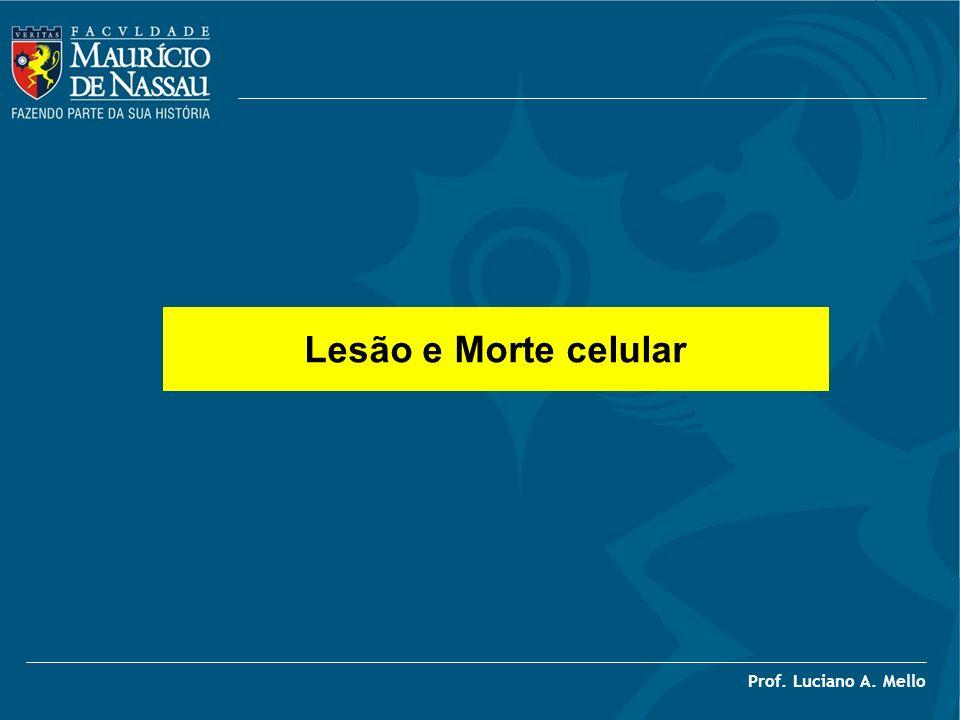 Lesão e Morte celular Prof. Luciano A. Mello