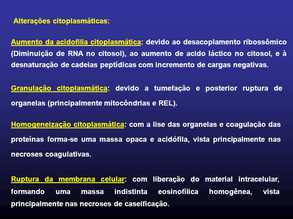 Alterações citoplasmáticas: Aumento da acidofilia citoplasmática: devido ao desacoplamento ribossômico (Diminuição de RNA no citosol), ao aumento de a