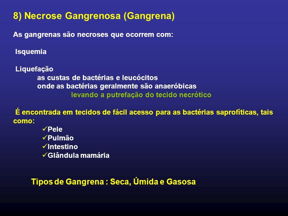 8) Necrose Gangrenosa (Gangrena) As gangrenas são necroses que ocorrem com: Isquemia Liquefação as custas de bactérias e leucócitos onde as bactérias geralmente são anaeróbicas levando a putrefação do tecido necrótico É encontrada em tecidos de fácil acesso para as bactérias saprofíticas, tais como: Pele Pulmão Intestino Glândula mamária Tipos de Gangrena : Seca, Úmida e Gasosa