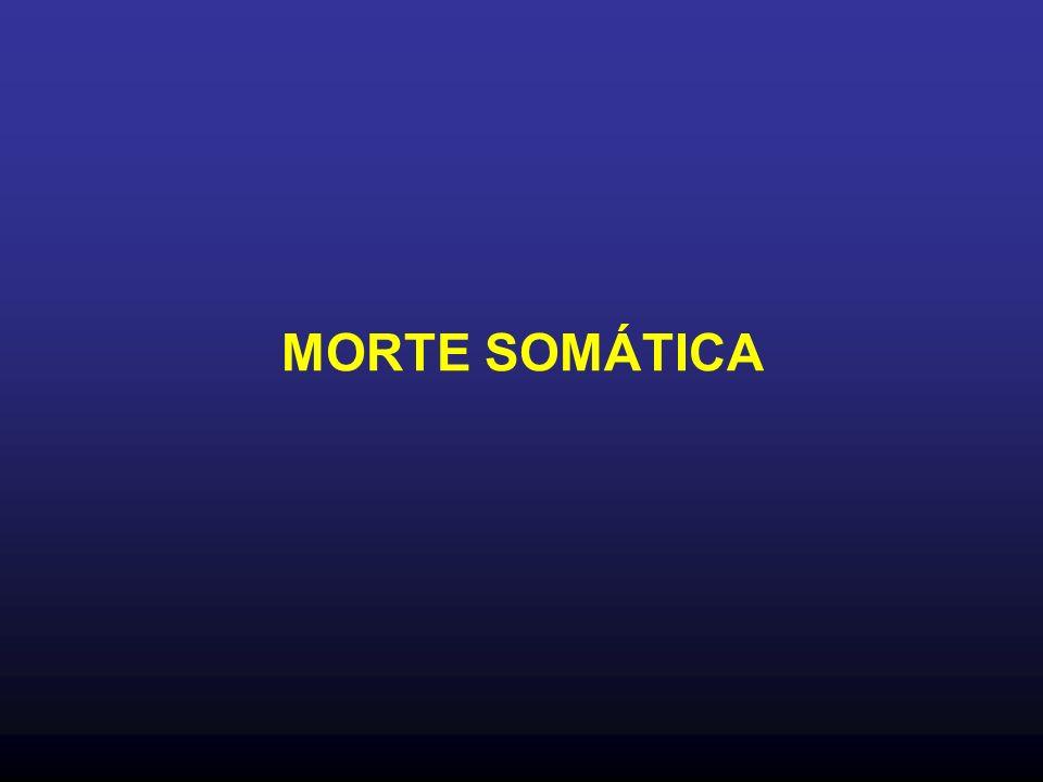 MORTE SOMÁTICA