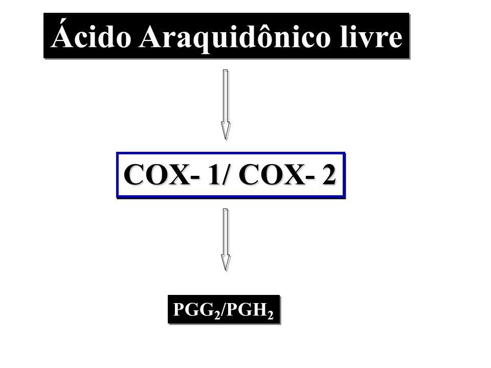 Ácido Araquidônico livre PGG 2 /PGH 2 COX- 1/ COX- 2