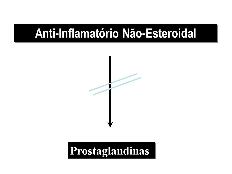 Anti-Inflamatório Não-Esteroidal Prostaglandinas