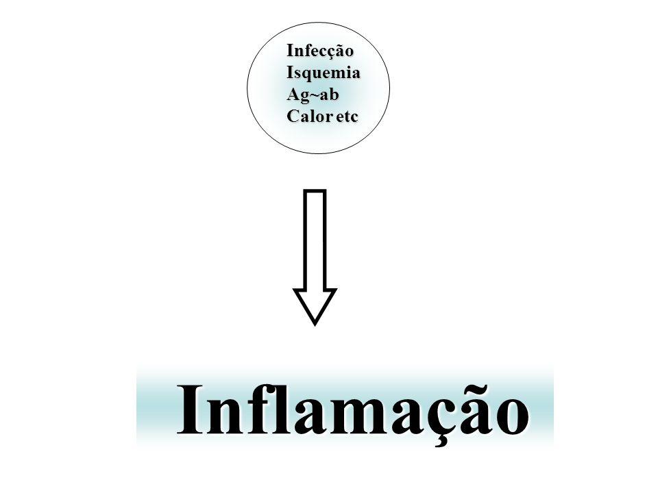 InfecçãoIsquemiaAg~ab Calor etc Inflamação