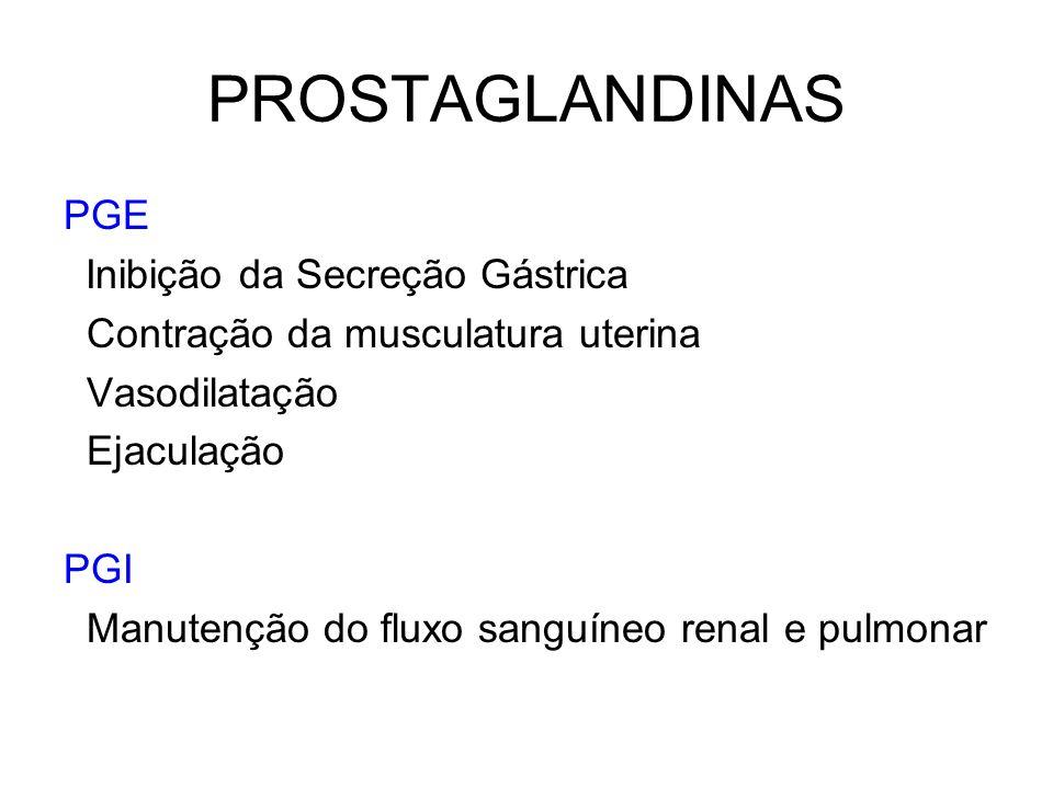 PROSTAGLANDINAS PGE Inibição da Secreção Gástrica Contração da musculatura uterina Vasodilatação Ejaculação PGI Manutenção do fluxo sanguíneo renal e