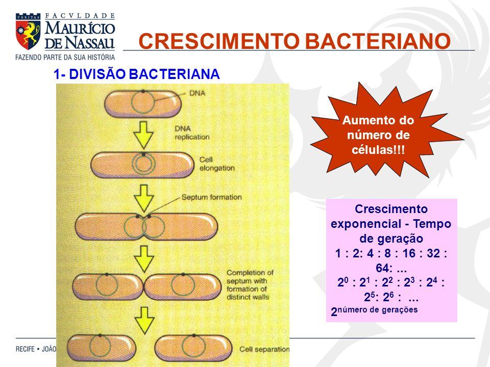 2- FASES DO CRESCIMENTO BACTERIANO
