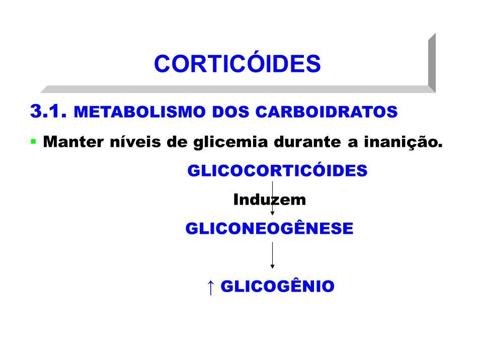 CORTICÓIDES 3.1. METABOLISMO DOS CARBOIDRATOS Manter níveis de glicemia durante a inanição. GLICOCORTICÓIDES Induzem GLICONEOGÊNESE GLICOGÊNIO