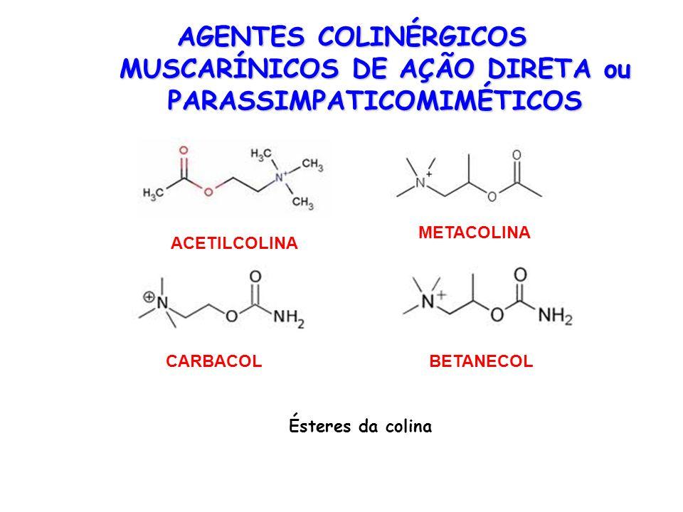 AGENTES COLINÉRGICOS MUSCARÍNICOS DE AÇÃO DIRETA ou PARASSIMPATICOMIMÉTICOS ACETILCOLINA METACOLINA BETANECOLCARBACOL Ésteres da colina