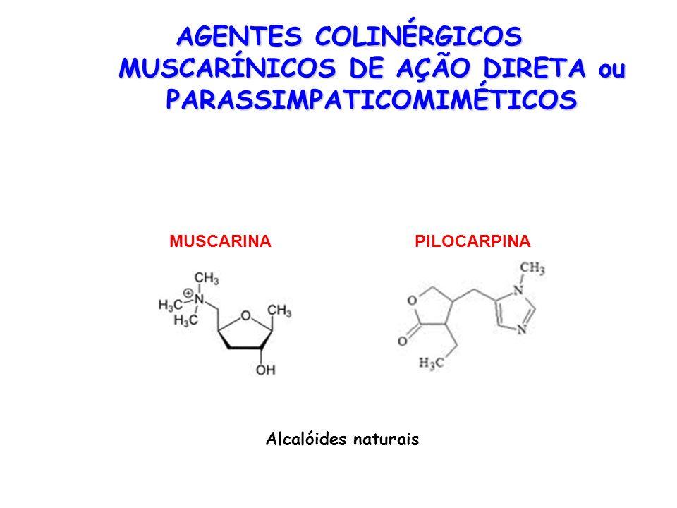 MUSCARINAPILOCARPINA AGENTES COLINÉRGICOS MUSCARÍNICOS DE AÇÃO DIRETA ou PARASSIMPATICOMIMÉTICOS Alcalóides naturais