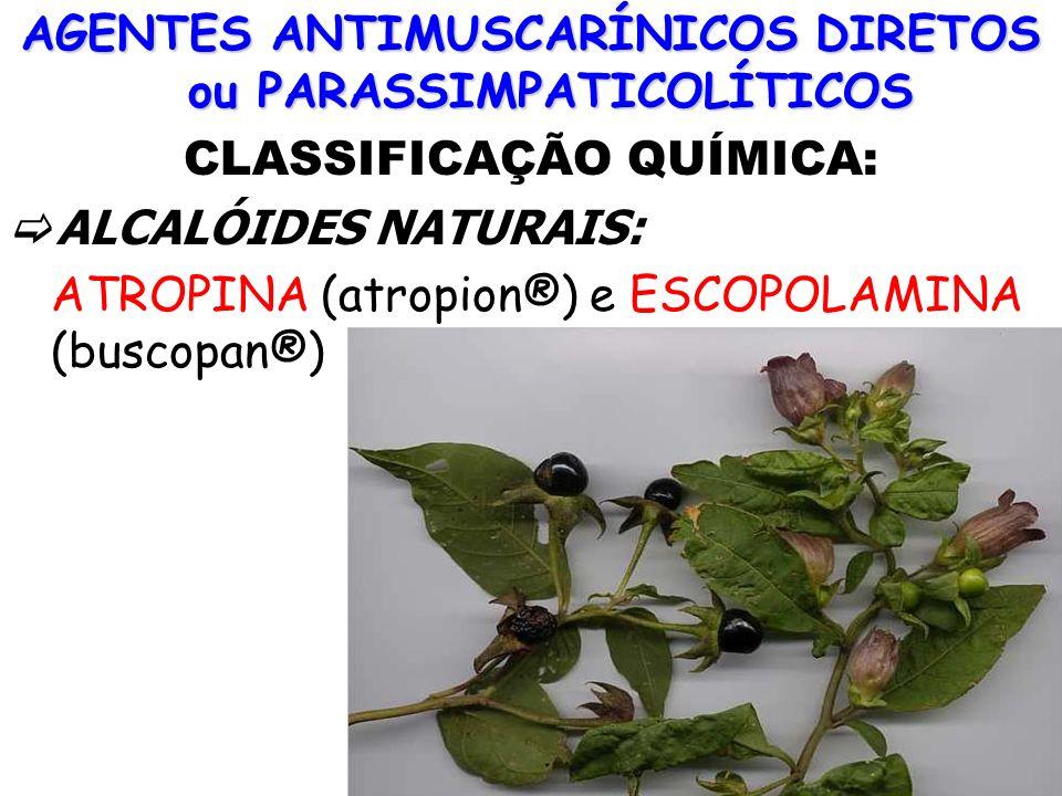 AGENTES ANTIMUSCARÍNICOS DIRETOS ou PARASSIMPATICOLÍTICOS CLASSIFICAÇÃO QUÍMICA: ALCALÓIDES NATURAIS: ATROPINA (atropion®) e ESCOPOLAMINA (buscopan®)