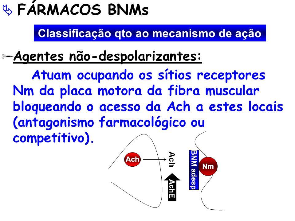 FÁRMACOS BNMs Agentes não-despolarizantes: Atuam ocupando os sítios receptores Nm da placa motora da fibra muscular bloqueando o acesso da Ach a estes