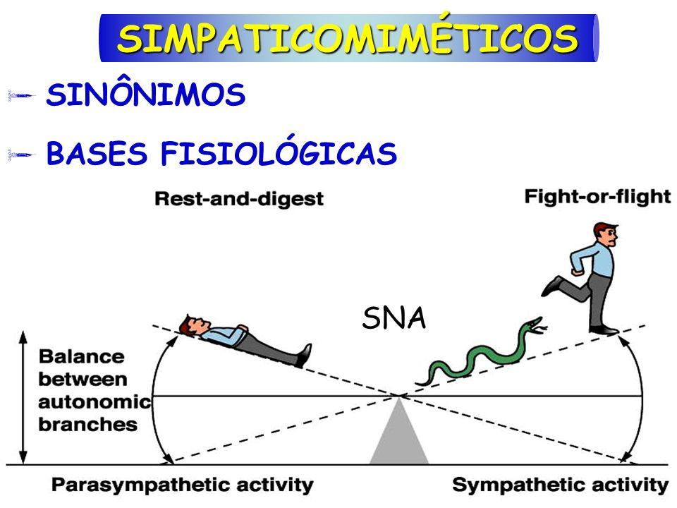 SINÔNIMOS BASES FISIOLÓGICAS SIMPATICOMIMÉTICOS SNA