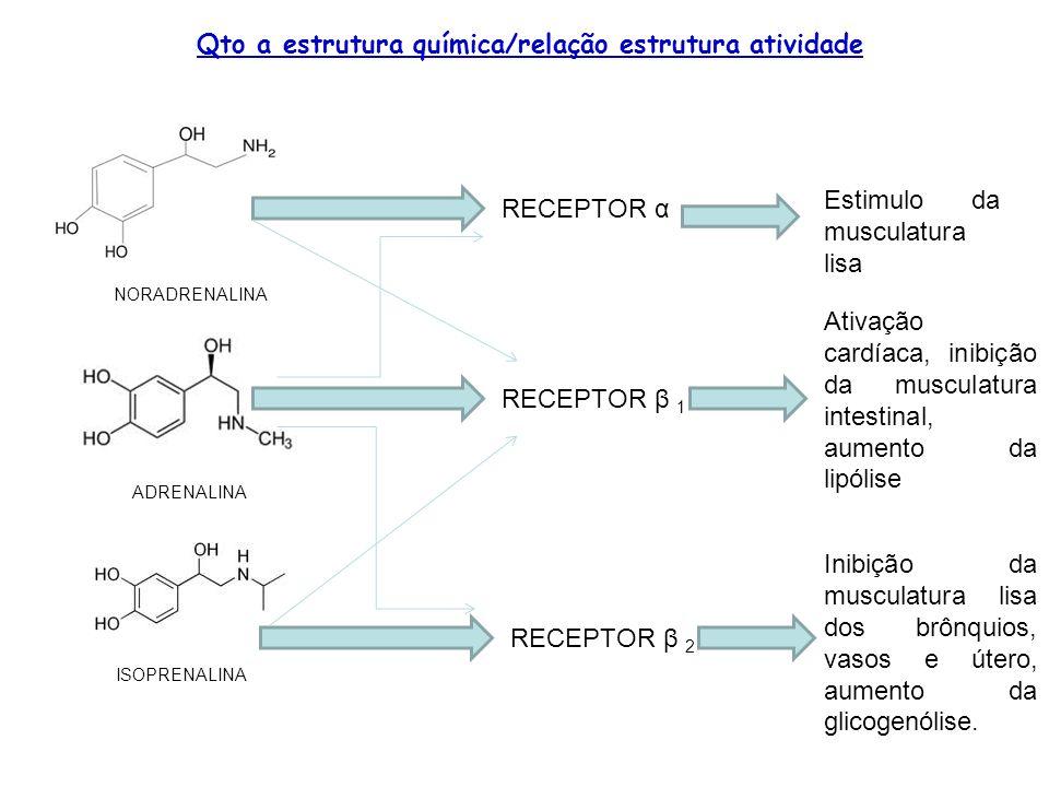 Qto a estrutura química/relação estrutura atividade NORADRENALINA ADRENALINA ISOPRENALINA RECEPTOR α RECEPTOR β 1 RECEPTOR β 2 Estimulo da musculatura