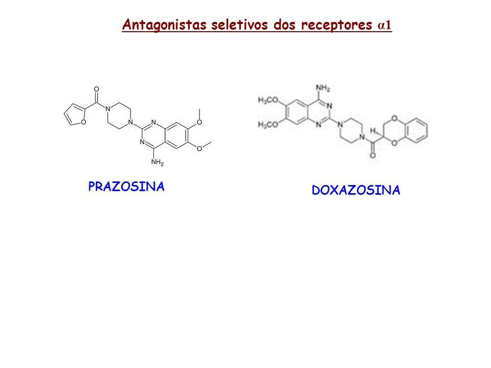 Antagonistas seletivos dos receptores α1 PRAZOSINA DOXAZOSINA