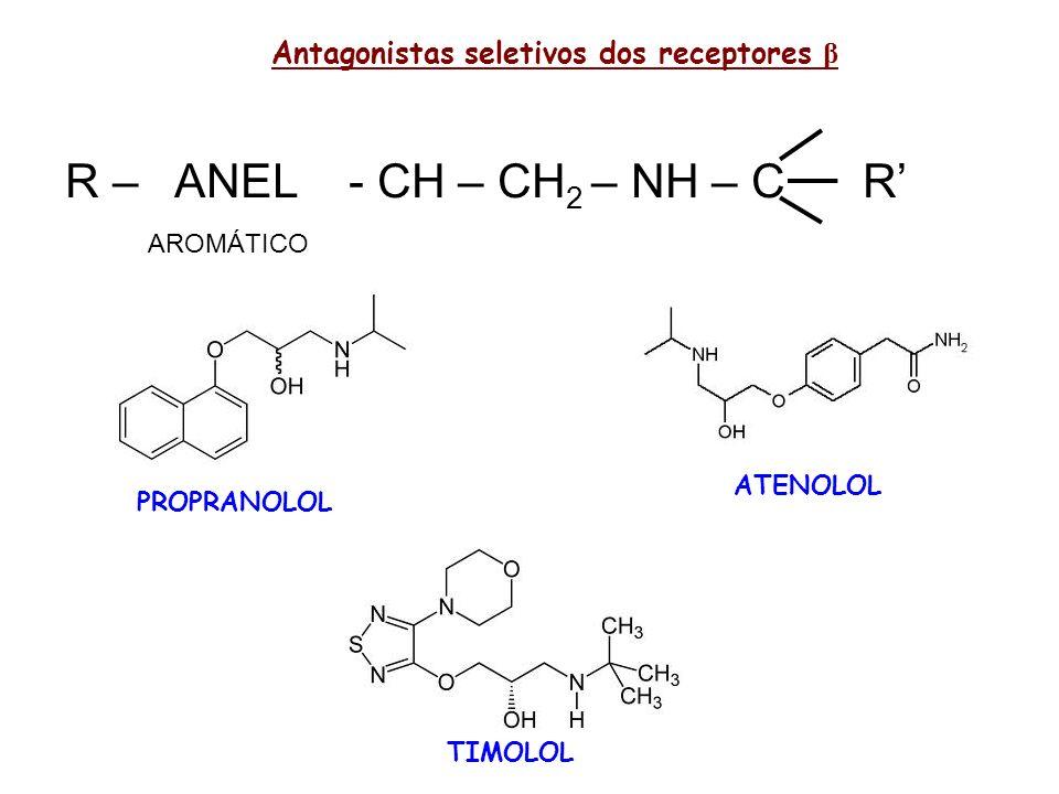 Antagonistas seletivos dos receptores β R – ANEL - CH – CH 2 – NH – C R AROMÁTICO PROPRANOLOL ATENOLOL TIMOLOL