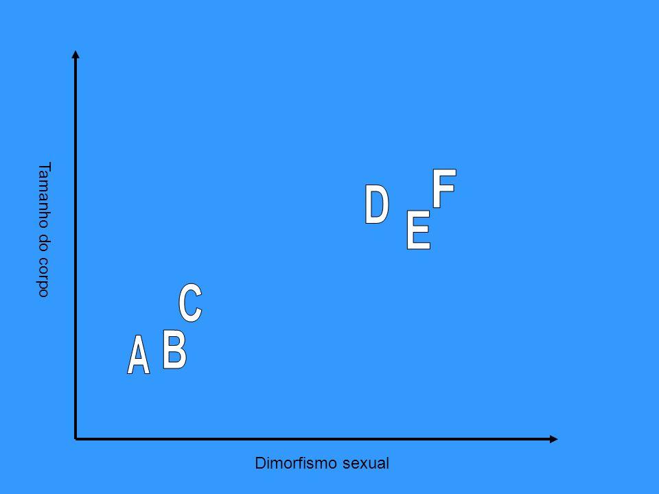 Dimorfismo sexual Tamanho do corpo