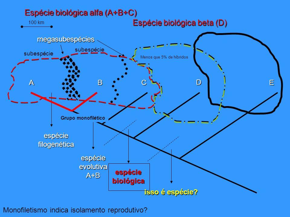espéciefilogenética espécieevolutivaA+B espéciebiológica Isso é espécie? ABC D E 100 km subespécie megasubespécies Espécie biológica alfa (A+B+C) Mono