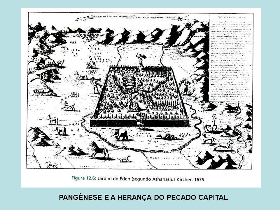 PANGÊNESE E A HERANÇA DO PECADO CAPITAL
