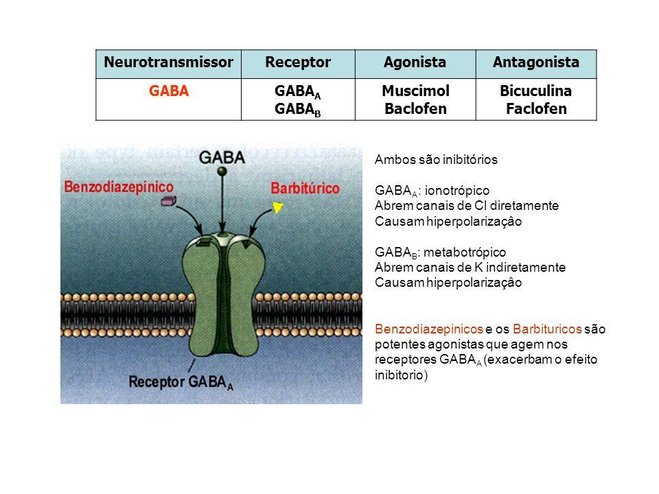 NeurotransmissorReceptorAgonistaAntagonista GABAGABA A GABA B Muscimol Baclofen Bicuculina Faclofen Ambos são inibitórios GABA A : ionotrópico Abrem c