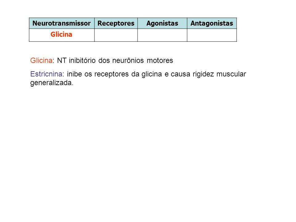 Glicina: NT inibitório dos neurônios motores Estricnina: inibe os receptores da glicina e causa rigidez muscular generalizada. NeurotransmissorRecepto