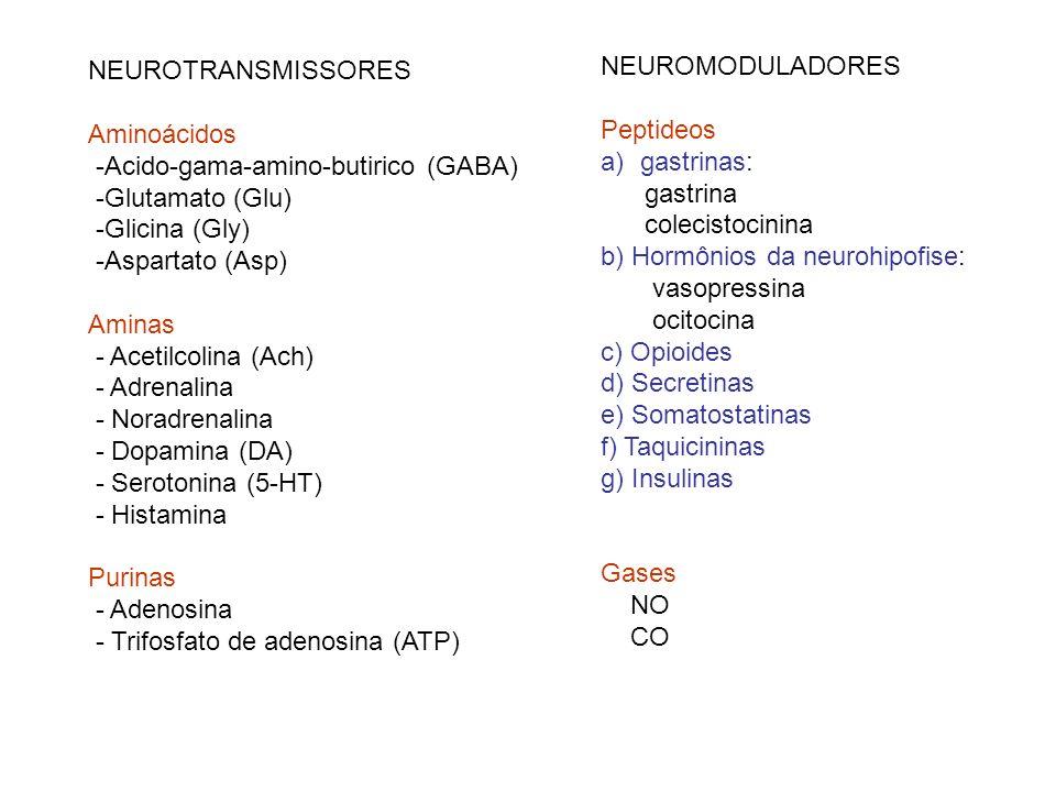 NEUROTRANSMISSORES Aminoácidos -Acido-gama-amino-butirico (GABA) -Glutamato (Glu) -Glicina (Gly) -Aspartato (Asp) Aminas - Acetilcolina (Ach) - Adrena