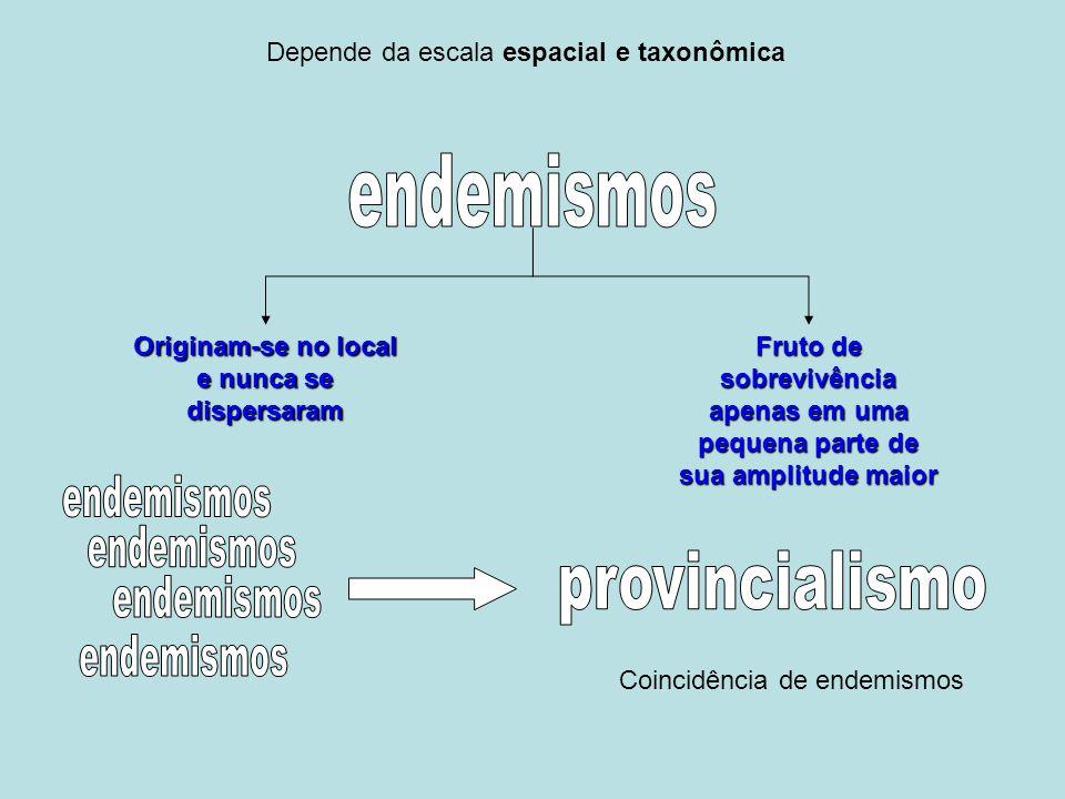 Depende da escala espacial e taxonômica Originam-se no local e nunca se dispersaram Fruto de sobrevivência apenas em uma pequena parte de sua amplitude maior Coincidência de endemismos