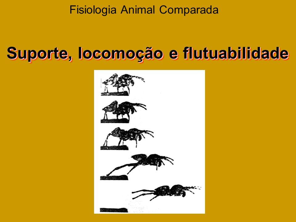 Fisiologia Animal Comparada Suporte, locomoção e flutuabilidade