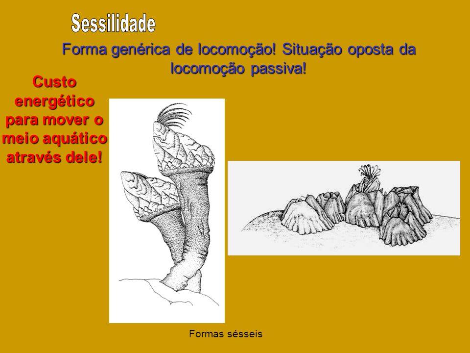 Forma genérica de locomoção! Situação oposta da locomoção passiva! Custo energético para mover o meio aquático através dele! Formas sésseis